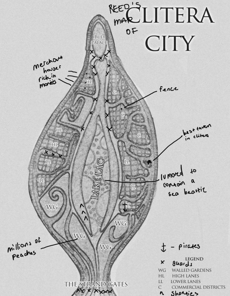reed's map of clitera city